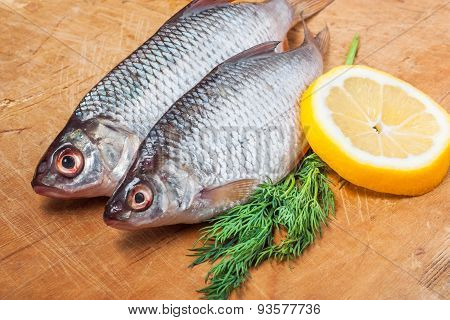 Raw Fish With Lemon And Dill