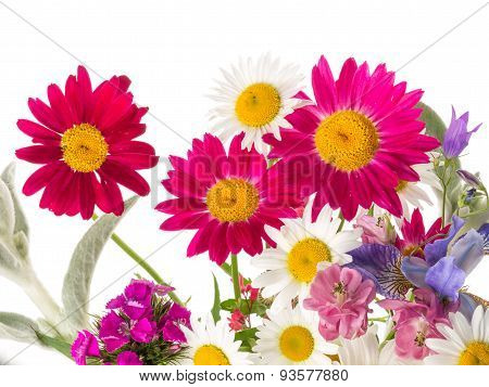 Field Bouquet Of Bright Summer