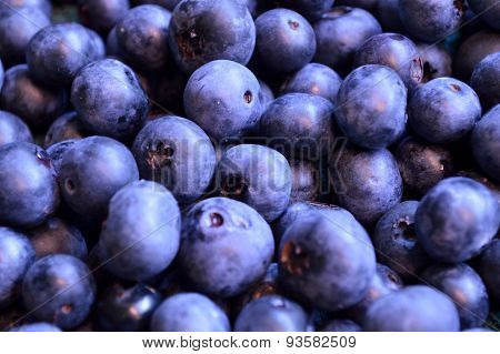 Plump Ripe Organic Blueberry Background