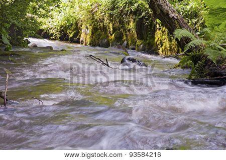Fast-flowing Stream