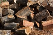 pic of firewood  - cut pile of firewood woodpile and sunlight - JPG