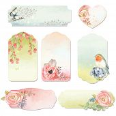 image of butterfly flowers  - Collection holidays labels with watercolor design elements - JPG