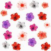 stock photo of color spot black white  - Vector illustration of floral seamless - JPG