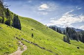 stock photo of bavarian alps  - Path to the Jaegerkamp in the Bavarian Alps - JPG