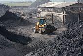 image of wheel loader  - Wheel loader machine loading coal - JPG