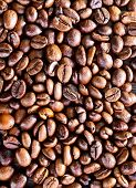 pic of coffee coffee plant  - coffee background coffee beans on a table - JPG