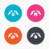 stock photo of dog-house  - Circle buttons - JPG
