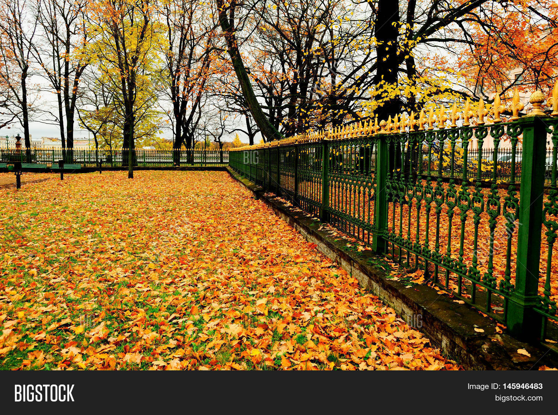 <b>Autumn City Park</b> Stock Footage Video 2911906 | Shutterstock
