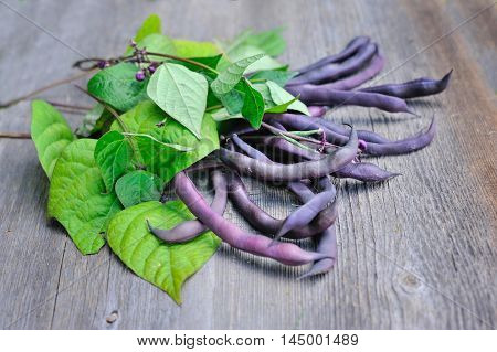 Fresh Red Bean Pods With Leaves And Flowers On Wooden Background