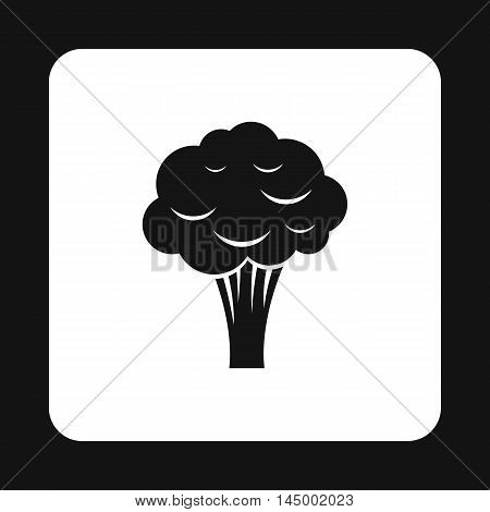 Broccoli icon in simple style isolated on white background. Vegetables symbol