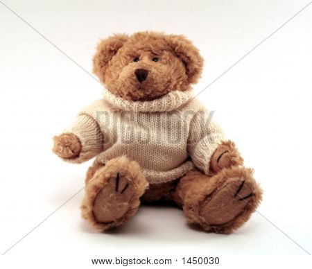 Teddybear Wearing A Sweater