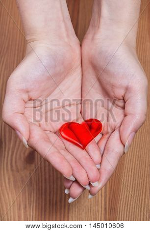 One Red Heart In Female Hands