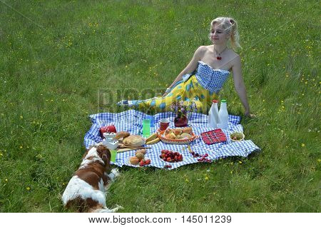 Lady And Dog On Picnic