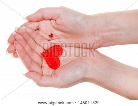 Two Red Hearts On Female Palms Isolated On White