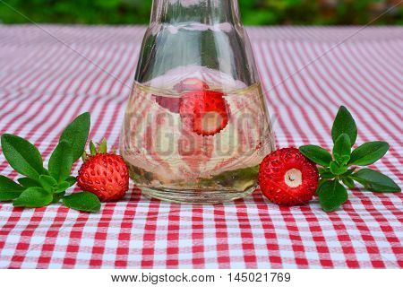 Home made brandy flavoured with fresh wild strawberries and wild thyme in small glass on red and white table cloth close up view