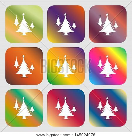 Coniferous Forest, Tree, Fir-tree Sign Icon . Nine Buttons With Bright Gradients For Beautiful Desig