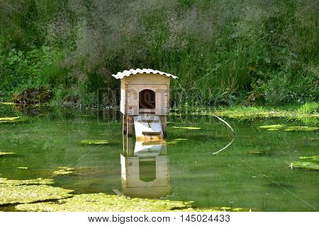 Wooden house on a nest on the pond for wild ducks
