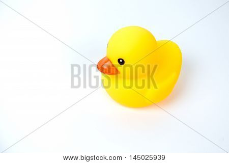 Yellow rubber duck on White Background .