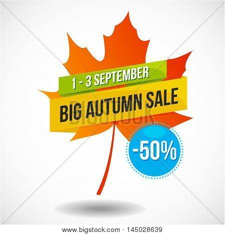 Big colorful autumn sale discount logo with leaf, emblem or sticker design