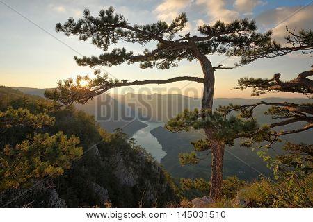 Tara National Park viewpoint Banjska Stena, Serbia