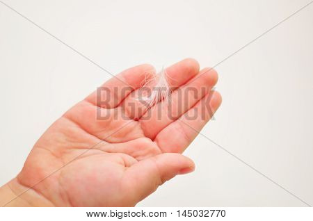 feather is on a child's palm on a white background