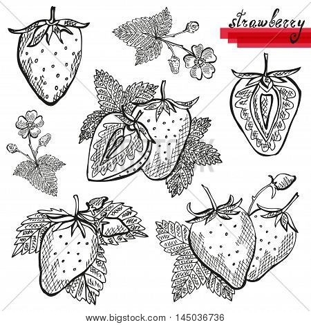 Strawberries Set