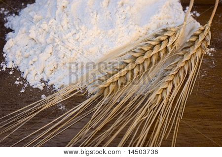 White flour with wheat ears, symbol of traditions and taste