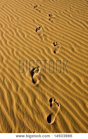 Some footprint in the desert, summer walking
