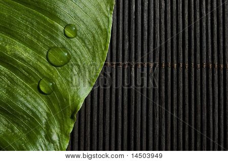 Three drops of fresh and clean water on a green leaf over a zen black background