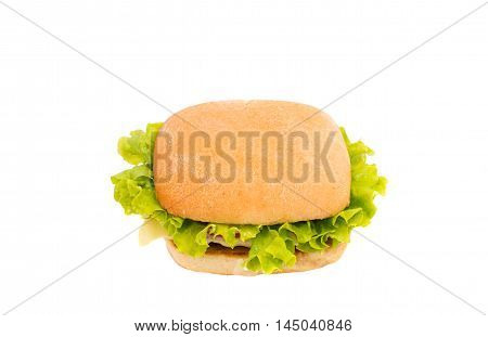 hamburger american food on a white background