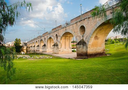 Palms bridge Badajoz Extremadura, Cáceres, Spain, Europe