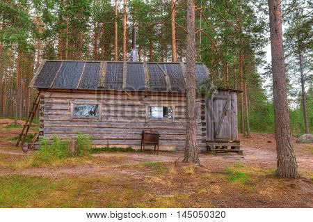 Hut in a pine forest in summer cloudy day