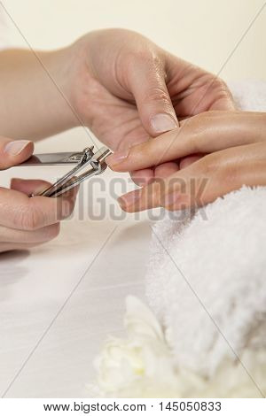 Close up View Of A Beautician's Hand Cutting Client's Fingernails