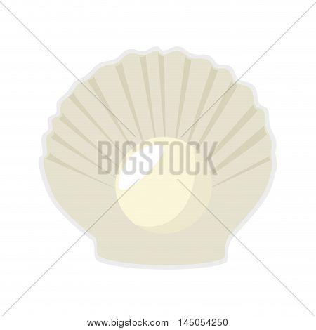 sea shell mollusks fauna ocean sea life cartoon vector illustration