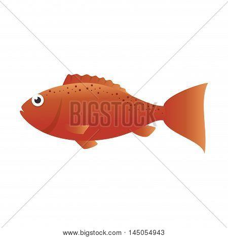 fish marine animal fauna ocean sea life cartoon vector illustration
