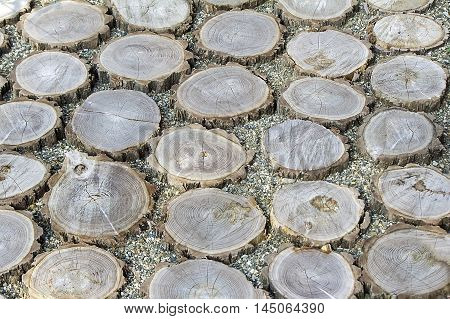 Sawn tree trunks placed on the walkway the spaces between them filled with rubble.