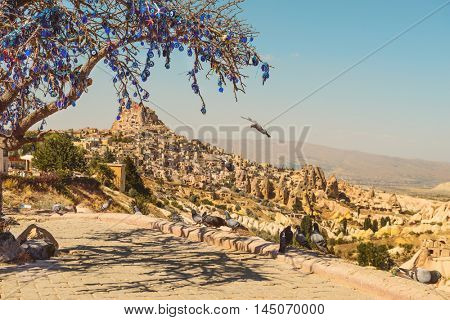 Pigeons flying in the Pigeons valley in Cappadocia, Turkey. Tree full of hanging Nazar amulets, special eye-shaped objects believed to protect against the evil eye.