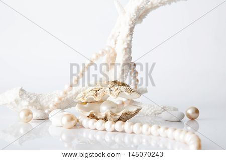 White pearl in shell decorated with pearl necklace on white background.