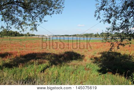 colorful plants on the bank and revealed bottom of drying dam on sunny autumn day and some trees at the foreground