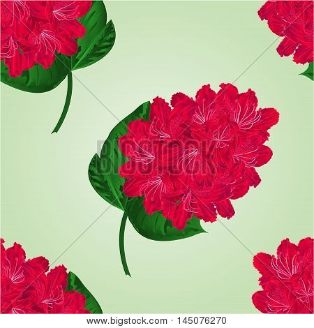 Seamless texture red rhododendron twig in bloom mountain shrub vector illustration