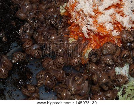 Young snails Achatina,a large number of small snails