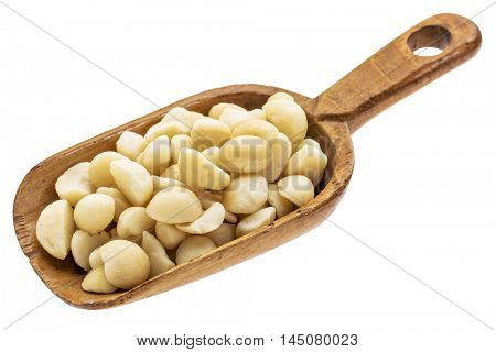 macadamia nuts on a rustic wooden scoop, isolated on white
