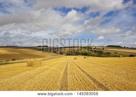 Straw Bales At Harvest