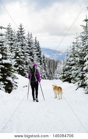 Woman backpacker traveling hiking in white winter woods with akita dog. Walking in winter forest with dog. Recreation fitness and healthy lifestyle in nature. Motivation and inspirational landscape.