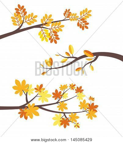 Set of autumn tree brunches with colorful fall leaves flat vector border