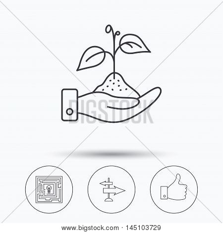 Save nature, thumb up and direction icons. Problem challenge, like linear signs. Linear icons in circle buttons. Flat web symbols. Vector