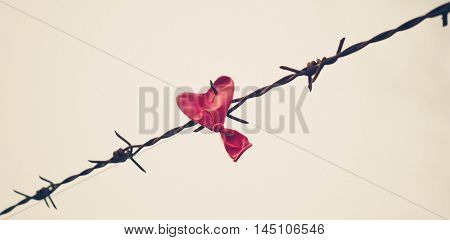 Love and obstacle / a red balloon in heart shape hung on barbwire