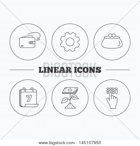 Cash money, profit and wallet icons. Receive money, enter code linear sign. Flat cogwheel and calendar symbols. Linear icons in circle buttons. Vector