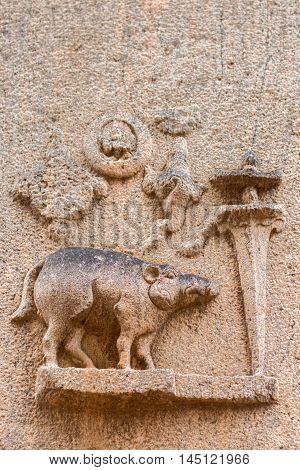 Madurai India - October 19 2013: On the wall of the older ruinous parts of the Kallalagar temple a boar figures as the fourth avatar of Vishnu.