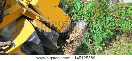 Machine used to cut a tree stump outside.